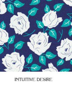 Intuitive Desire